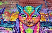 Street art Montreal cat