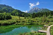 Sava spring, Zelenci, Slovenia