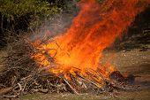 foto of bonfire  - A view of a large orange bonfire - JPG