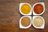 four healthy spices (turmeric, ginger, cinnamon and paprika) in white bowls on a grunge wood