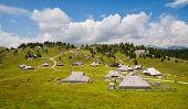 stock photo of velika  - Velika planina - JPG