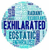 pic of rapture  - Exhilarated word cloud on a white background - JPG