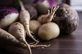 foto of root-crops  - root vegetables from the garden on a brown background - JPG