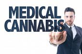 image of cannabis  - Business man pointing the text - JPG