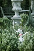 image of garden sculpture  - Duck statues in english garden. vintage style