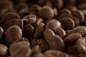 pic of brew  - macro roasted beans black coffee ready to brew delicious coffee  - JPG