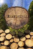 pic of cutting trees  - Trunks of trees cut and stacked and wooden sign section of tree trunk with text lumber hanging with metal chain - JPG