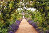 picture of english cottage garden  - Colourful English summer flower garden with a path under archway - JPG