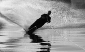 stock photo of pro-life  - black and white silouette of a wtare skier cutting a wave - JPG