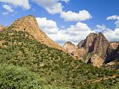 Landscape of Kolob Canyons District of Zion National Park