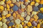 picture of pollen  - Beautiful photos of pollen - JPG