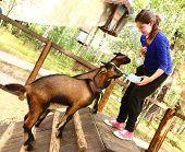 Постер, плакат: teen girl feeding baby goat from nipple milk bottle