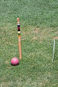 Purple Croquet Ball By Post