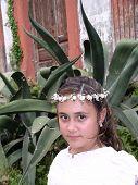 Rosita y Aloe