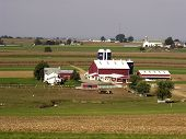picture of feedlot  - amish dairy farm in lancaster county pennsylvania - JPG