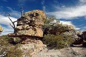 Chiricahua National Park, Az, Landscape