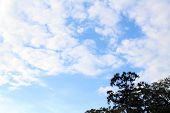Finally, Blue Sky In Kyoto -even Though Its Still Cloudy- poster