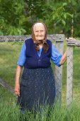Old woman wearing scarf