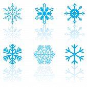 sechs Schneeflocken