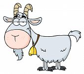 stock photo of farm animals  - Happy Gray Goat A Door Bell Cartoon Character - JPG