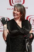 SANTA MONICA - JUNE 8:  Roseanne Barr at the sixth annual TV Land Awards held at the Barker Hanger i
