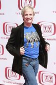 SANTA MONICA - 8 de junio: Ron Palillo en la sexta anual TV Land Awards celebrada en la percha de Barker en Sa