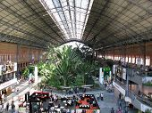 Garden Within The Atocha Train Station In Madrid Spain