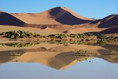 Red sanddune mirrored in water,
