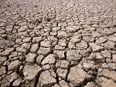 Horizontal of dried and cracked river bed