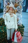 Shopping for Christmas. Young happy woman doing Christmas shopping holding christmas decorated shopp poster
