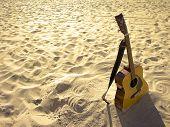 Постер, плакат: Солнечный берег акустическая гитара