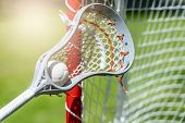 Abstract View Of A Lacrosse Stick Scooping Up A Ball. Sunny Day poster