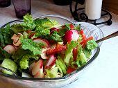 Fresh Tossed Salad