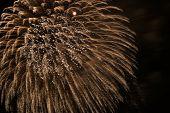 6530 Fireworks
