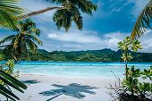 Panorama Of Tropical Beach Lush Vegetation Blue Lagoon On Bright Sunny Day. Vacation Holidays Concep poster