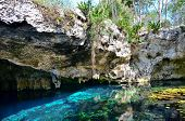 stock photo of cenote  - Gran Cenote - JPG