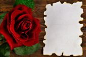 Ancient Texture Of Old Paper, Background For Writing And Red Rose. Vintage Grunge Paper With Dark Ed poster