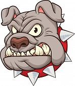 Bulldog mascot. Vector clip art cartoon illustration. All in a single layer.