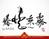 Snake Calligraphy, Chinese New Year 2013 Translation: Snake Flying in the Cloudy Sky, Metaphorical Means Skillful, Strong Ability and Capability