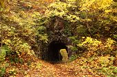 picture of fukushima  - Old tunnel with autum leaves in the forest Fukushima Japan - JPG