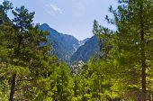 Mountain trails thru Samaria gorge