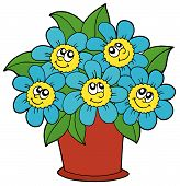 stock photo of pot plant  - Cute flowers in brown pot  - JPG