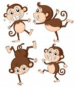 Illustration of four monkeys on a white background