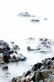 Sea stone and wave
