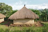 Traditional Village Near Rwenzori Mountains