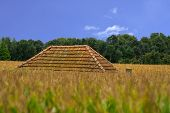 House In Cornfield