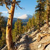 John Muir Trail & Pacific Crest Trail