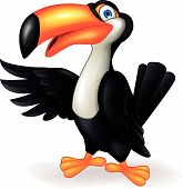 stock photo of toucan  - Vector illustration of toucan bird cartoon character - JPG