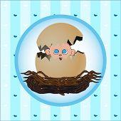 Newborn giftcard