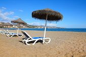 stock photo of suntanning  - Malaga in Andalusia region of Spain - JPG